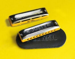 Seydel Just Play Harmonica – Junior Starter Kit